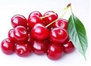 Cherries North Star