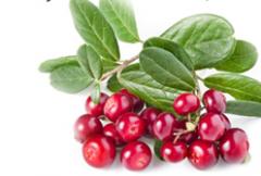 Cranberry frozen