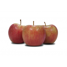 Jabłka odmiany Szampion