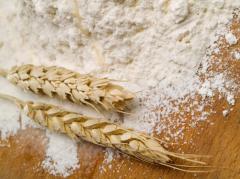 Maka pszenna, różne typy