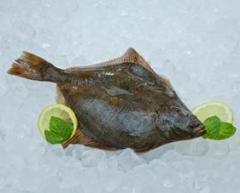 Flądra mrożona pakowana luzem , karton 10 kg , flądra , ryby mrożone