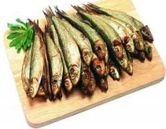 Szprot mrożony IQF luzem, karton 10 kg , szproty mrożone , ryby , ryba mrożona