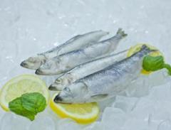 Szprot mrożony w bloku 38 kg , szprota mrożona , ryby mrożone , ryba