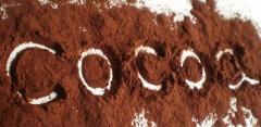 Какао-порошок, какао-масса, какао целлюлозы