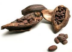 Alkalized cocoa powder, alkalized coffee, spice,