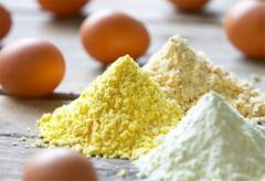 Dry egg white (albumen)