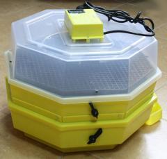 Hatchery boxes