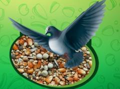 Karma dla ptaków , mieszanki ziaren dla gołębi ,