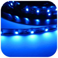 Taśma LED 12V  24W - niebieska / niebieski SMD3528