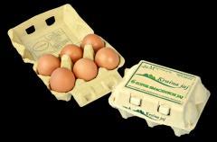Jaja konsumpcyjne , pakownie detaliczne 6szt na jaja kl.M