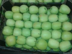 Jabłka Golden Delicius