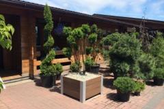 Meble ogrodowe z drewna polimerowego