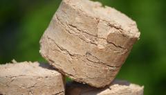 Brykiet drzewny ze składników biodegradowalnych