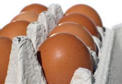 Sprzedaż jajek konsumpcyjnych