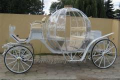 Cinderella type stylish carriage