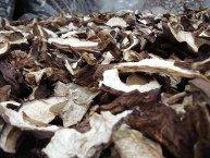 White mushrooms, dried