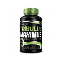 BIOTECH USA Tribulus Maximus 90tabletek