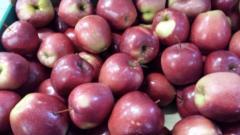 Jabłka, kapusta pekińska, papryka, bakłażan,