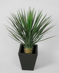 Plantes artificielles décoratives