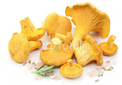 Dried mushrooms Cantharellus