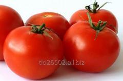 Świeże pomidory, świeże warzywa