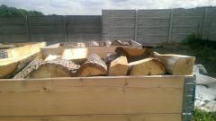 Drewno drzewo dębowe dąb opałowe kominkowe suche