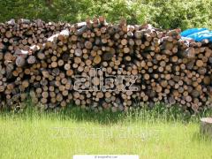 Drewno do kominków suche