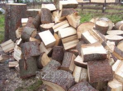 Packed firewood