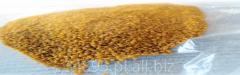 Gluten maize