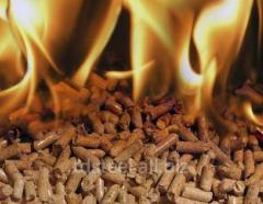Pellety z luski słonecznika, pellety drzewne,