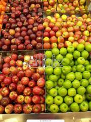 *Jabłka idared* świeże, prosto z sadu od OMEGA
