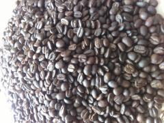 Swiezo palona kawa