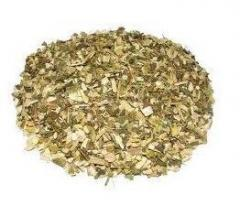 Hitch herb, bidentis Herba