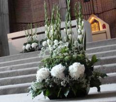 Kompozycje z kwiatów stabilizowanych do wystroju wnętrz lub dekoracji stołów bankietowych.