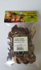 Brown cap boletus