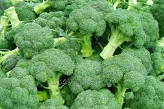 Nasiona brokuła w szerokim wachlarzu odmian.