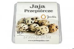 Eggs, quail