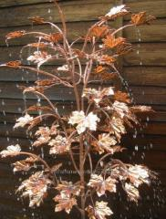 Remarkable fountain MAPLE COPPER ideal for the