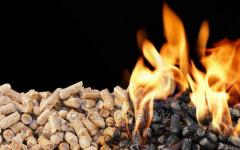 Fuel in the form of dry granules from pine wood