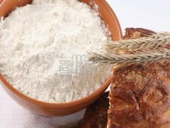 Mąki pszenne typu 450 i 550.