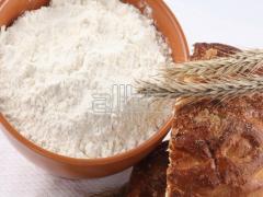 Mąka pszenna typ 450 i typ 550 sprowadzana z Ukrainy, dobra cena.