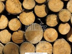 Круглая древесина, только сумма целого автомобиля.