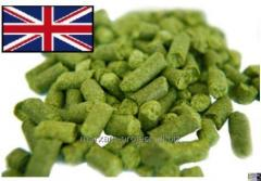 Hop the ADMIRAL from Great Britain, granules of