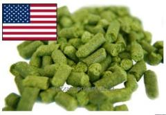 American grades of hop bitterness of Bullion of