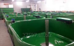 Plant fishing complexes