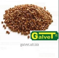 Canned buckwheat
