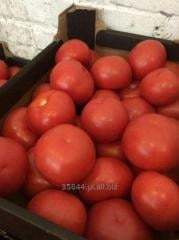 Pomidory świeże