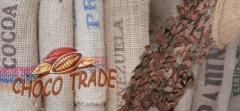 Cocoa beans /Kakaobohnen / ziarno kakaowca surowe