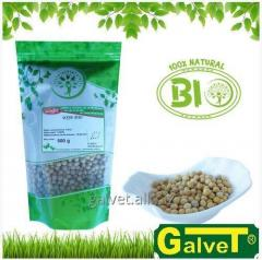 BIO Soja - składnik kuchni wegetariańskiej -