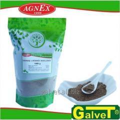 Sementes das culturas de oliveira